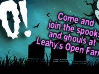 Boo at Leahys Open Farm