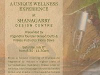 Mini Wellness Festival in Shanagarry Design Centre this Saturday July 8